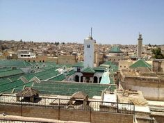 Al Karaouin of Fez: The Oldest University in the World