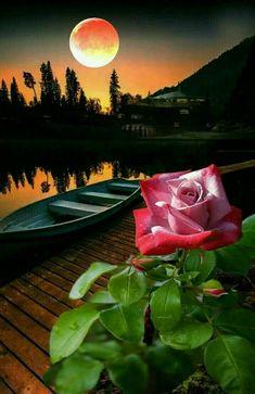 Just lovely..... ❤️ - Hitesh K Jain - Google+