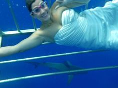 Trash the Dress: Swimming with Sharks Edition