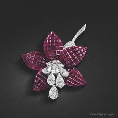 Van Cleef & Arpels Fuchsia clip, Van Cleef & Arpels collection.