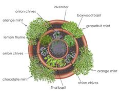 overhead view of Herb Tower container garden - creative edible container garden using an arrangement of three pots (one 24-inch, one 18-inch, and one 14-inch)