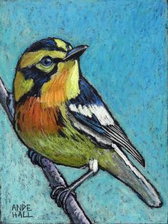 "9x12 Original Bird Painting - Oil Pastels- ""Blackburnian Warbler"" - Not a Print - bird art -songbird -"
