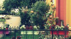 beautiful gardens here