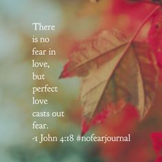 Because perfect love casts out fear! #nofear #nofearjournal #biblereading #biblereadingplan Day 3- join in anytime!