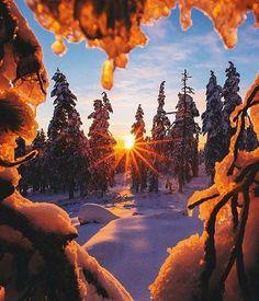 """""""Sunrise in Lapland, Finland   PC: @dansmoe"""""""