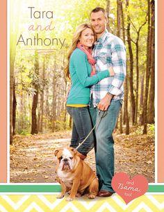 Our Chosen Child adoption profile sample- Trendy meets adorable! Chevron meets an adorable bulldog!