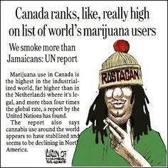 CANADA IS SMOKED!     #cannabissativa #cannabis #marijuana #popquiz #fun #happy #cannabiscommunity #weed #happy420 #stonner #smartstoner #medicalmarijuana #follow #thegimmicks #like #me #legalizeit #ganja #legal #thc #cbd #cbdoil #plant #herbs #organic