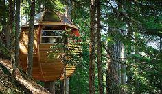 O construtor Joel Allen criou essa casa na árvore em formato de ovo que parece bem confortável apesar do pouco espaço. Quero uma dessas quando eu morar em um sítio.