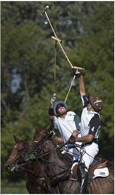 Maria Polo, Animal Movement, On Golden Pond, Polo Horse, Kings Game, Power Animal, Sport Of Kings, Equestrian Style, Horse Riding