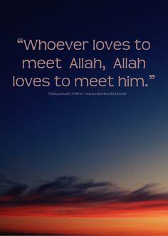 ♥ Allah