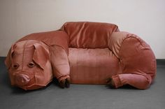Domestic Pig Couch....as opposed to the Wild Pig Couch.