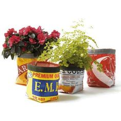Google Image Result for http://nibsblog.files.wordpress.com/2008/08/opt-recycled-planters-from.jpg