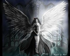Dark Angel Or Dark Fairy Pictures Dark Angels, Vs Angels, Angels And Demons, Fallen Angels, Foto Fantasy, Dark Fantasy Art, Light Vs Dark, Image Pinterest, Light Angel