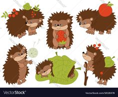 Hedgehogs Clipart Digital Vector Woodland Hedgehogs by TanitaArt Baby Hedgehog, Hedgehog Animal, Diy And Crafts, Crafts For Kids, Mermaid Clipart, Clip Art, Autumn Activities, Cute Cartoon, Vector Free