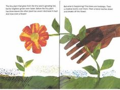 1.3 Highlight critical features, big ideas, and relationships. Students can listen to this story, The TIny Seed by Eric Carle, to be able to better understand the life cycle of a plant. The story provides both pictures and text.