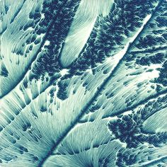 Eroded Leaves by Chaotic Atmospheres , via Behance