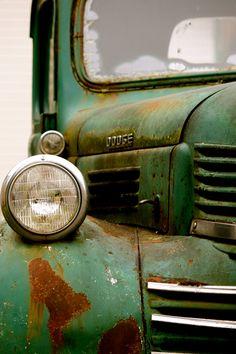 Green Dodge, Old Pickup Truck, Dodge Truck, Car Collector Old Dodge Trucks, Dodge Pickup, Old Pickup Trucks, 4x4 Trucks, Dodge Cummins, Lifted Trucks, Carros Hot Rod, Classic Trucks, Classic Cars
