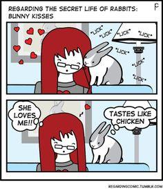 #rabbit #bunny #bunnies