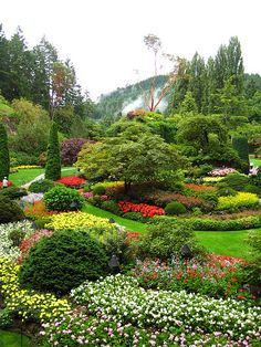 Butchart Gardens; several amazing gardens: sunken, rose, zen, and more.