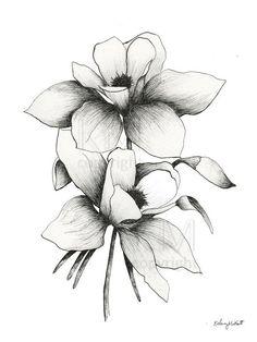Blue Columbine Flower Ink Sketch Wall Art Botanical Wall | Etsy Knee Tattoo, Ankle Tattoo Small, Small Tattoos, White Tattoos, Ankle Tattoos, Wrist Tattoo, Tiny Tattoo, Columbine Tattoo, Columbine Flower