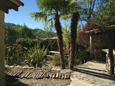 """La terrasse « Amazone » de la Villa L'occitane. C'est un espace vous garantissant un voyage pour le dépaysement total direction """"L'Amazonie"""". Sa végétation, son agencement, son barbecue typique, son calme, le tout dans une ambiance tropicale... ☼ #villaloccitane #Poujols #vacances"""