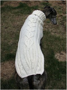 Ravelry: Side Button Greyhound Sweater pattern by Terri Lee Royea Snood Pattern, Dog Sweater Pattern, Dog Pattern, Sweater Knitting Patterns, Jumper Patterns, Knitting Ideas, Baby Knitting, Crochet Patterns, Large Dog Sweaters