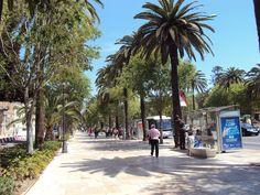 Paseo del Parque in Malaga Centre (Costa del Sol - Andalusia, Spain)