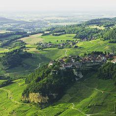 Les vignes de Château-Chalon se parent de verdure | Jura France | #JuraTourisme #Jura