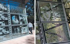 An innovative environmental graphics program that highlights an institution's world-class documents collection.
