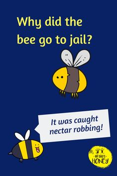 Bee Happy, Happy Fun, Bee Puns, Bee Quotes, Bee Facts, Cheesy Puns, I Love Bees, Jokes And Riddles, School Daze