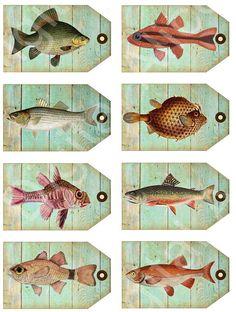 FISH Tags  Instant Download Digital Printable Scientific Fish