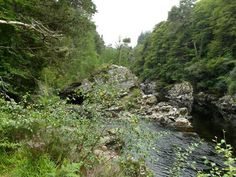 Junction of River Findhorn and River Divie House Gardens, Great Days Out, Salmon Fishing, Wild And Free, Scotland, Home And Garden, River, Places, Outdoor