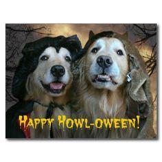 Golden Retriever Happy Howl-oween Postcard