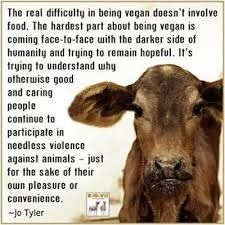 veganism - Google Search
