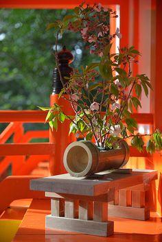 30 Pictures of Japanese Art Of Flower Arrangement, Ikebana Ikebana Flower Arrangement, Flower Arrangements Simple, Japanese Colors, Japanese Flowers, Japanese Haiku, Japanese Art, Japanese Things, Japanese Lifestyle, Wakayama
