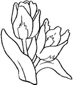 Tulips Coloring Page 3 Is A From FlowersLet Your Children Express Their Imagination When They Color The Will Never
