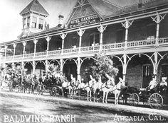 Oakwood Hotel In Arcadia California