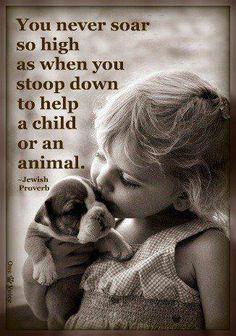 Uno nunca se eleva tan alto como cuando uno se agacha para ayudar a un niño o un animal. - proverbio judío