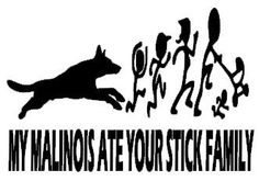 48 Best Malinois Stickers Labels Images Stickers