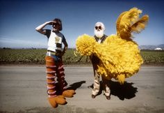 I Am Big Bird: The Carroll Spinney Story  The Year in Certified Fresh Movies