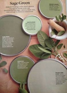 Better Homes and Garden - Sage green paint colors- I like Prairie sage for wall color Sage Green Paint, Green Paint Colors, Paint Colors For Home, Wall Colors, House Colors, Green Sage, Green Metallic Paint, Sage Green Bedroom, Ivory Paint
