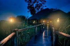 """wetland night""的图片搜索结果"