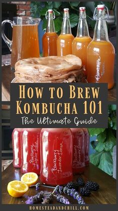 Kombucha is a refreshing, tangy, healthy fermented beverage that is easy and affordable to make at home! Come learn everything you need to know to start brewing kombucha. We have been brewing for over 4 years! Make Your Own Kombucha, How To Brew Kombucha, Kombucha Tee, Italian Cream Soda, Vegetarian Recipes, Healthy Recipes, Frozen Pineapple, Sweet Tea, Summer Drinks