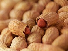 Como plantar amendoim. O amendoim é um dos membros da família de legumes, sendo nativo da América do Sul. Uma planta que não atinge grande altura, não passando dos 30 cm quando atinge a idade adulta. Porém, se espalha com m...