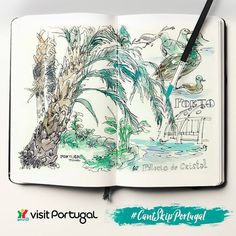 Our Italian sketcher friend, Benedetta Dossi, walked around Porto drawing some its most beautiful places. Here she gives us a fresh perspective on the Crystal Palace, one of the city's iconic green spaces. Have you been there yet? What's your favourite spot in #Porto? [Credits: Benedetta Dossi] #SketchTourPortugal #PortoandNorth #CantSkipPortugal #Portugal