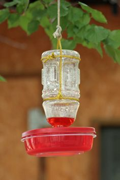 DIY hummingbird feeder...did this for a science project...worked great.