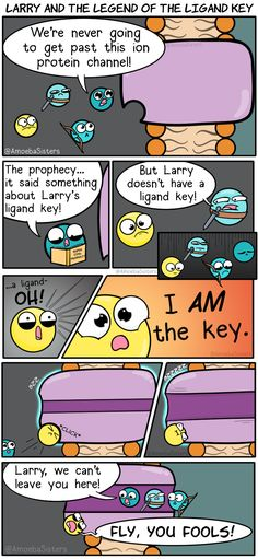 Larry and the Legend of the Ligand Key Sie erzählen Geschichten von Ihrem Mut, Larry the Ligand. The post Larry und die Legende des Ligandenschlüssels appeared first on Remedios Ellis. Biology Jokes, Science Biology, Earth Science, Science And Nature, Chemistry Jokes, Forensic Science, Physical Science, Science Fair, Life Science