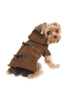 Bundled Up: Cold-Weather Pet Essentials - Gilt Home