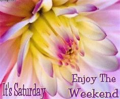 Saturday Good Morning Happy Saturday, Good Afternoon Quotes, Saturday Saturday, Saturday Quotes, Good Morning Quotes, Weekend Fun, Happy Weekend, Happy Monday, Weekend Messages