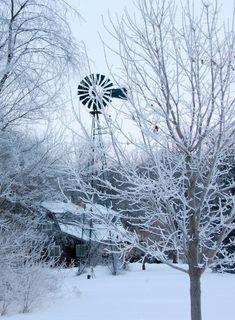 Blizzard Cold..via Lilly Jordan Pioneer Farms, Farm Windmill, Old Windmills, I Love Snow, Farm House Colors, Winter Magic, Country Scenes, Theme Noel, Winter Scenery